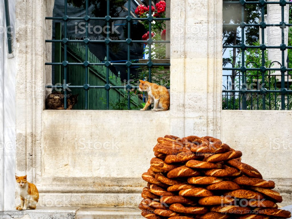 Turkish bagel (simit) and cats in the mosque garden zbiór zdjęć royalty-free