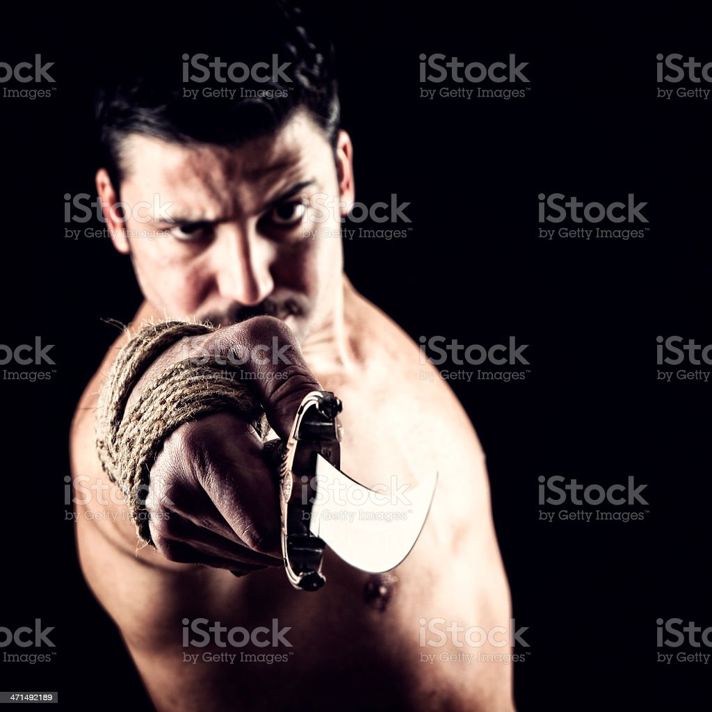 Turkish fighter royalty-free stock photo