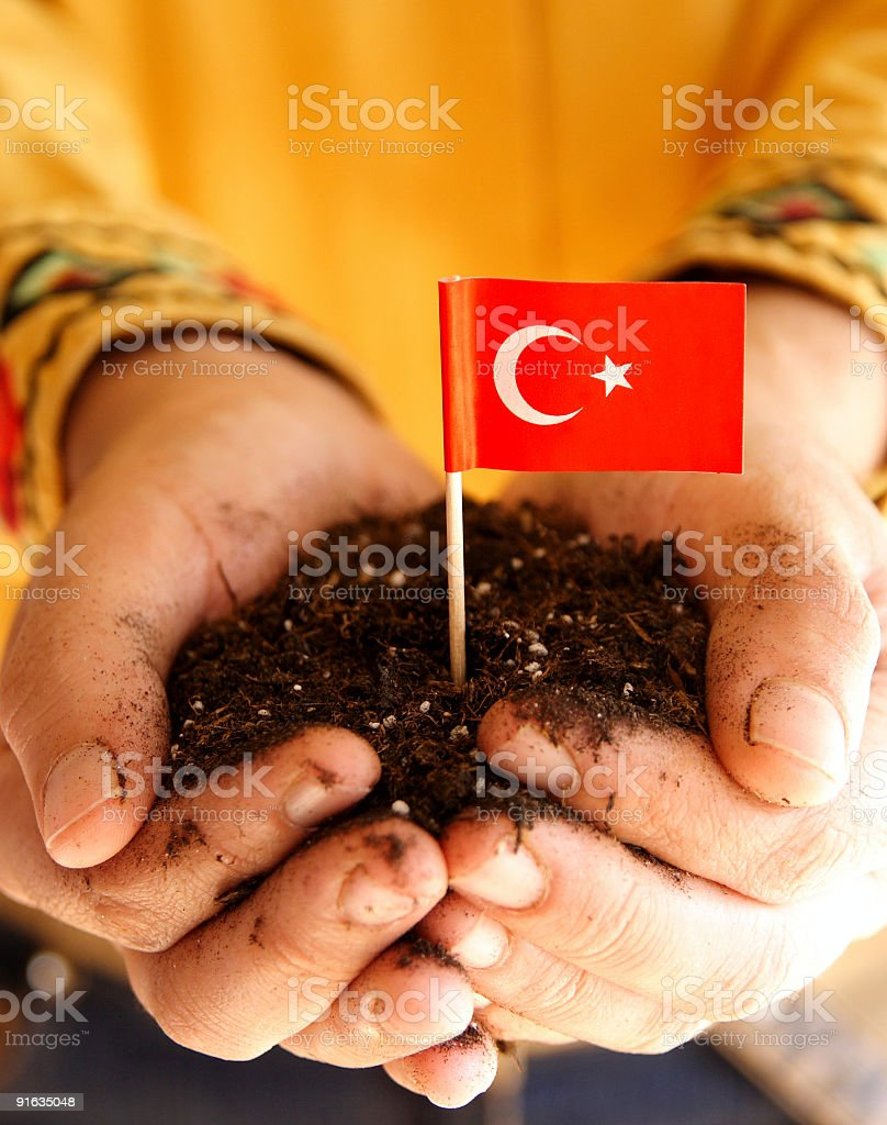 Turkish flag in the palm stock photo