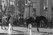 Turkish mounted troops