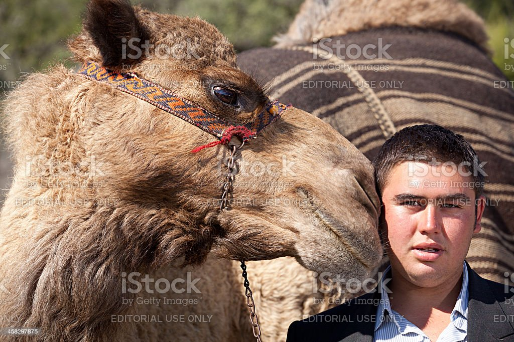 Turkish nomad boy with his camel royalty-free stock photo