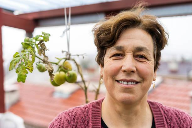 turkse senior vrouw portraid met hebzucht tomaten - turkse etniciteit stockfoto's en -beelden