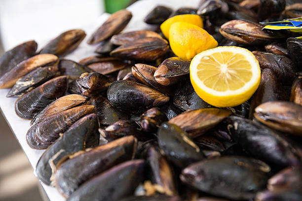Turkish style stuffed mussels called midye dolma on the bench stock photo