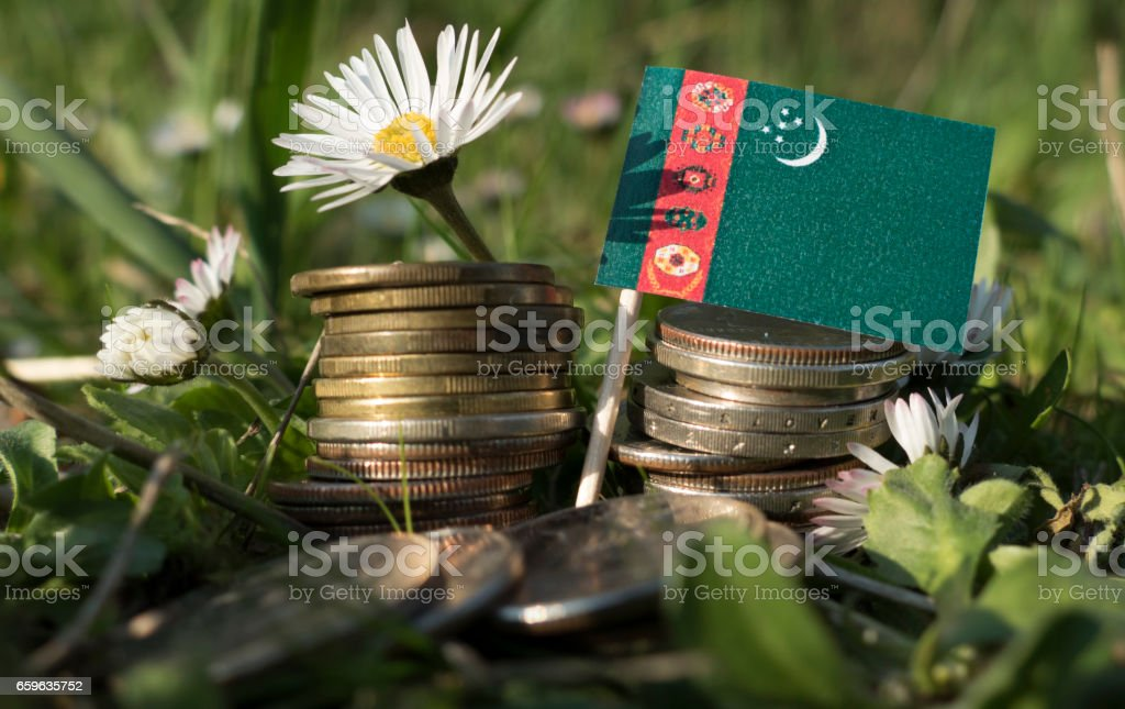 Turkmenistan flag with stack of money coins with grass and flowers stock photo