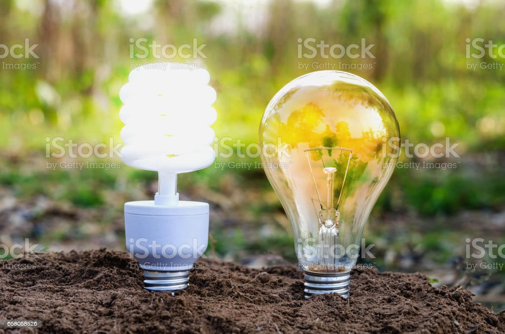 turn on bulb in nature concept eco light royalty-free stock photo