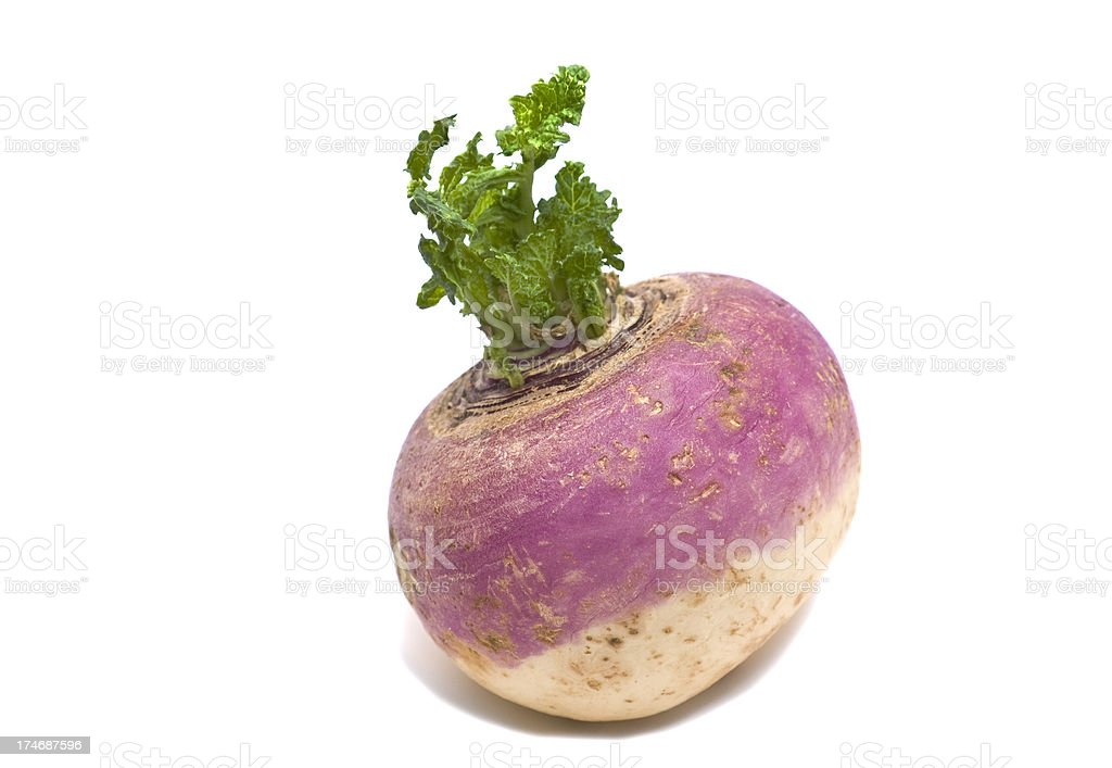 Turnip stock photo