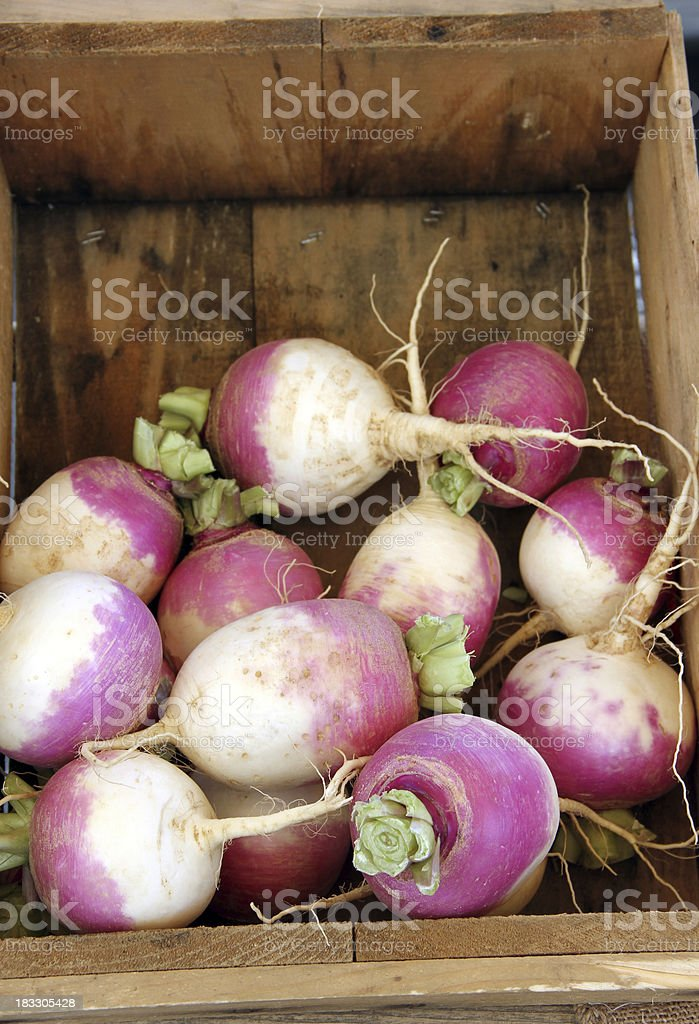 Turnips for sale at the Farmers Market stock photo