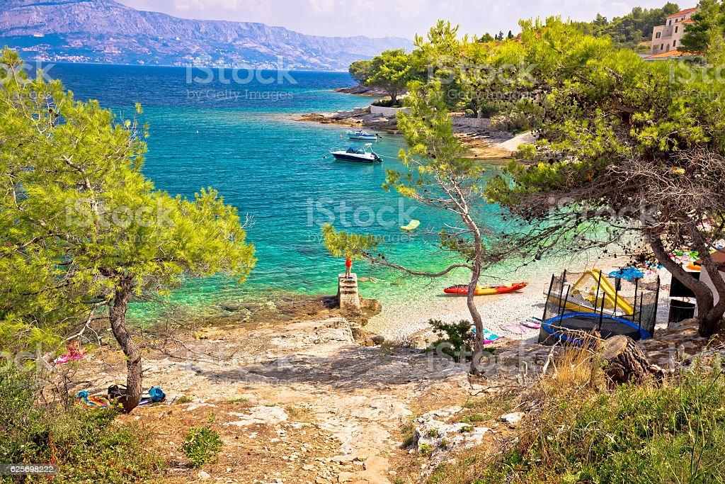 Turquoise beach in pine trees on Brac stock photo