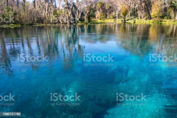 Turquoise blue silver springs picture id1090131780?b=1&k=6&m=1090131780&s=612x612&h=gyuhga2wddz1ox6sye7op0otpueu4xhfzekbap2oyiu=