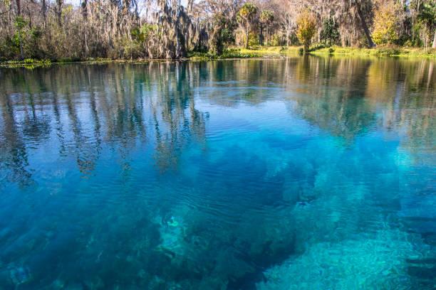 turquoise blue silver springs - источник стоковые фото и изображения