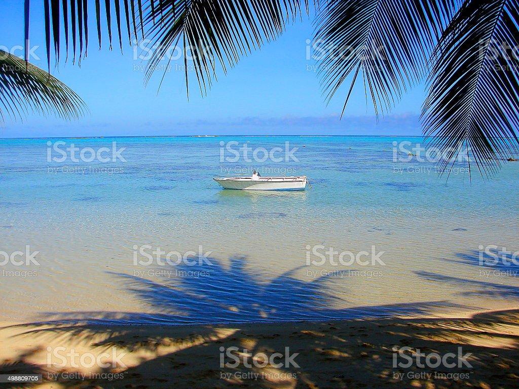 Turquoise Bora Bora beach and Palm Tree foliage shadow, Polynesia royalty-free stock photo
