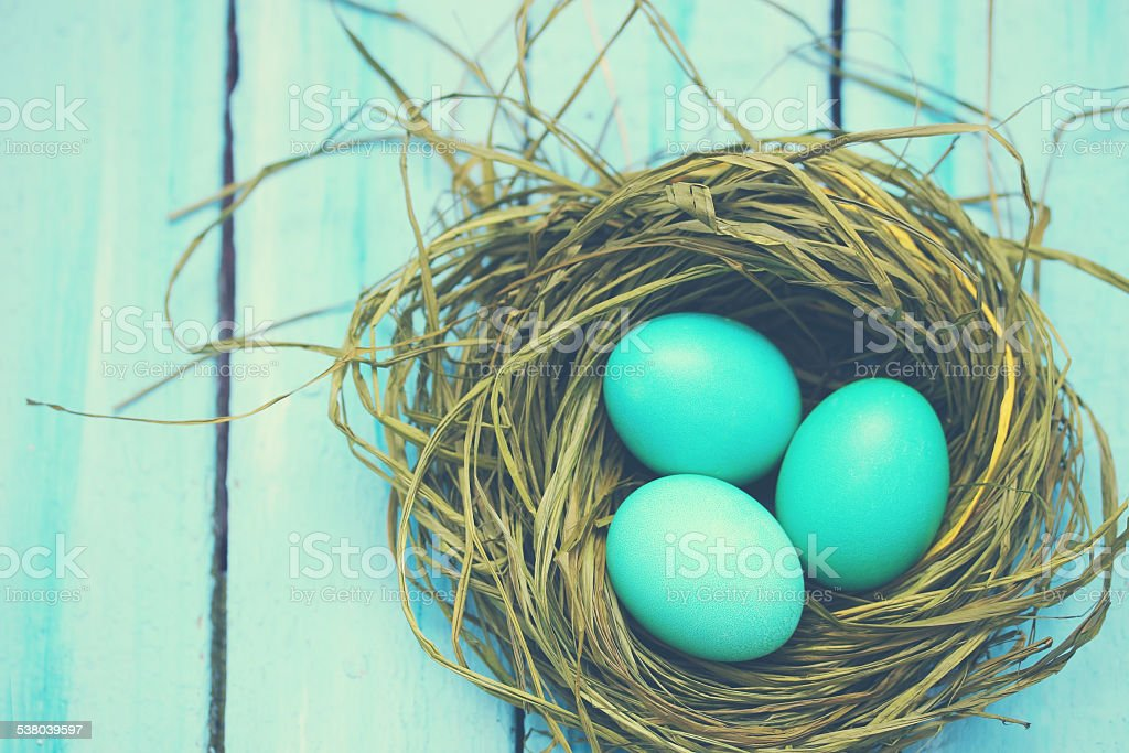 turquoise eggs, tinted stock photo
