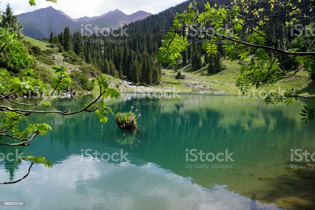Turkusowe jezioro - Zbiór zdjęć royalty-free (Bez ludzi)