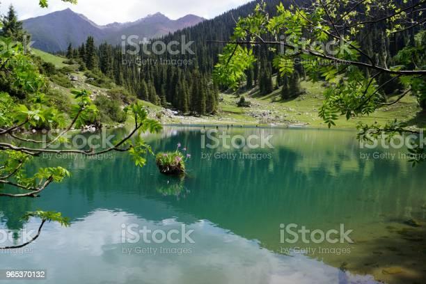 Turkusowe Jezioro - zdjęcia stockowe i więcej obrazów Bez ludzi