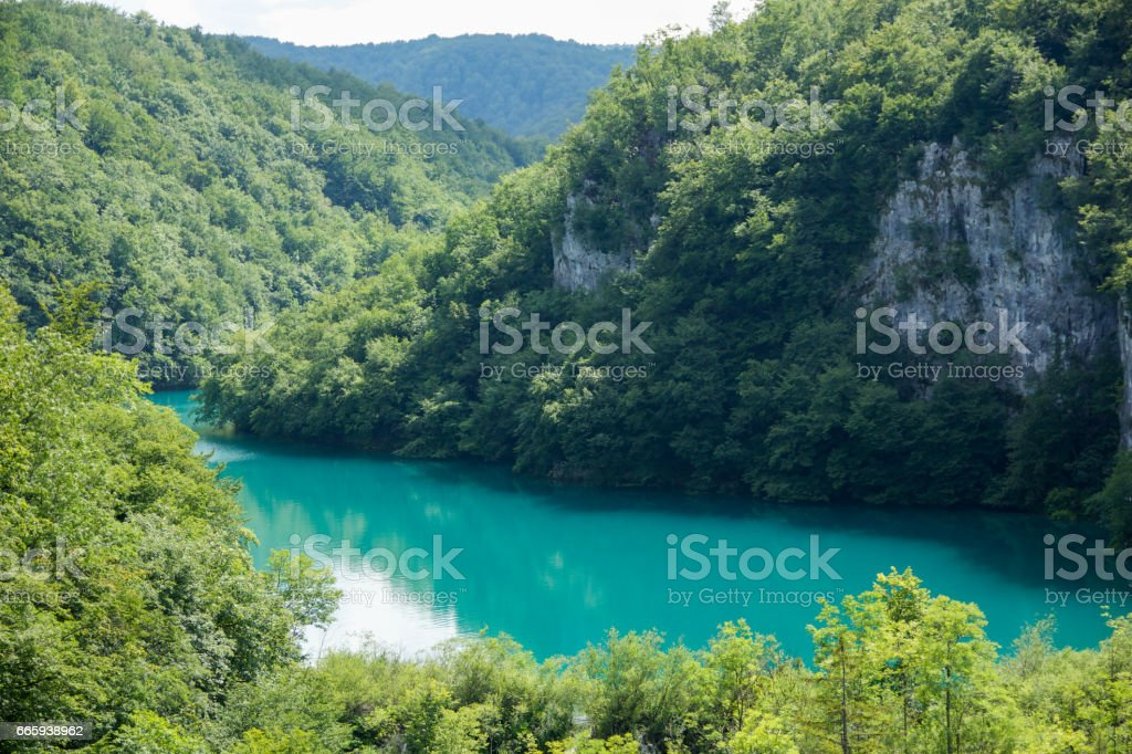 turquoise lake surrounded by green forest in Plitvice lakes, Croatia foto stock royalty-free