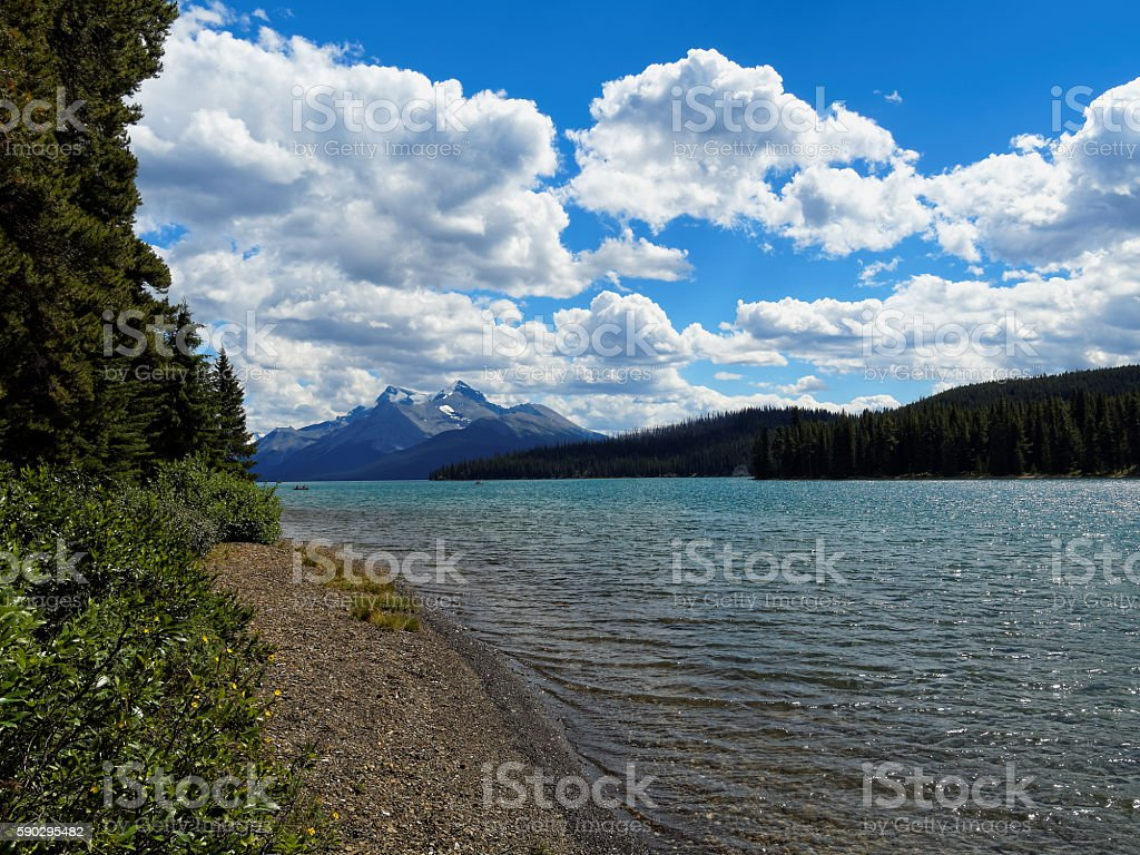 Turquoise Maligne Lake on a Sunny Day royaltyfri bildbanksbilder