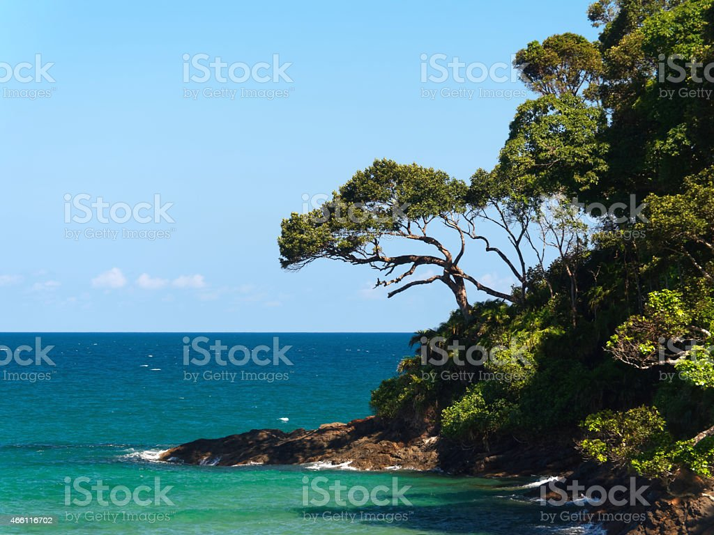 Turquoise ocean and lush nature. stock photo