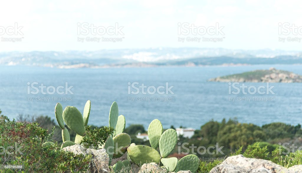 turquoise ocean in Sardinia on costa smeralda stock photo