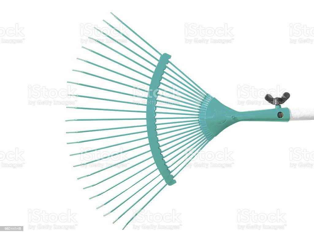 Turquoise raker royalty-free stock photo