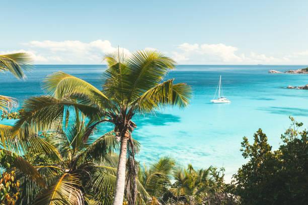 turkosa havet i seychellerna - katamaran bildbanksfoton och bilder