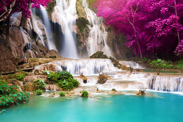 turquoise water of kuang si waterfall, luang prabang. laos - waterfall stock photos and pictures