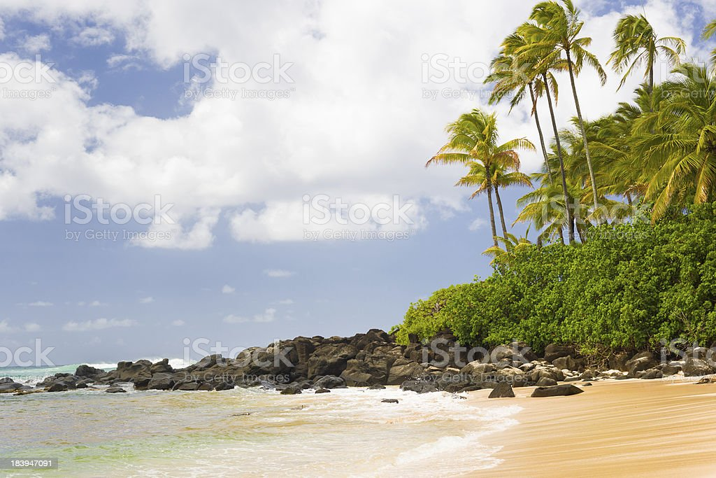 Turtle Bay royalty-free stock photo
