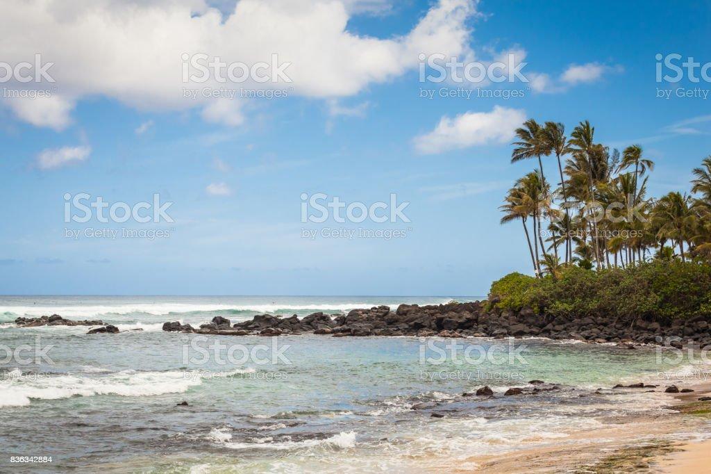 Turtle Beach Seascape Hawaii stock photo