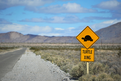 A traffic sign in the California desert warning of turtle crossing