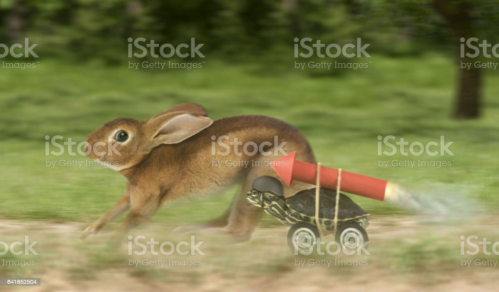 Turtle hare race with a difference stock photo