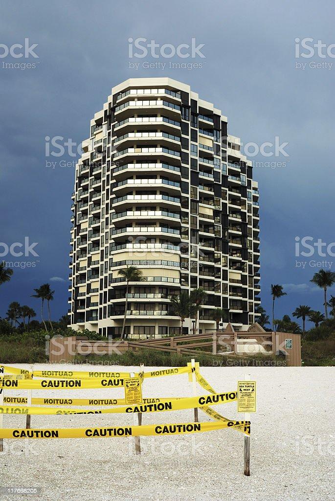 Turtle nest on beach stock photo