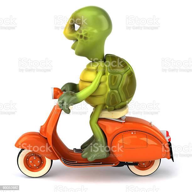 Turtle on a scooter picture id93052682?b=1&k=6&m=93052682&s=612x612&h=fw osw5hpbs88ckzrxqahagafrpwu5ctzb sdjfpj60=