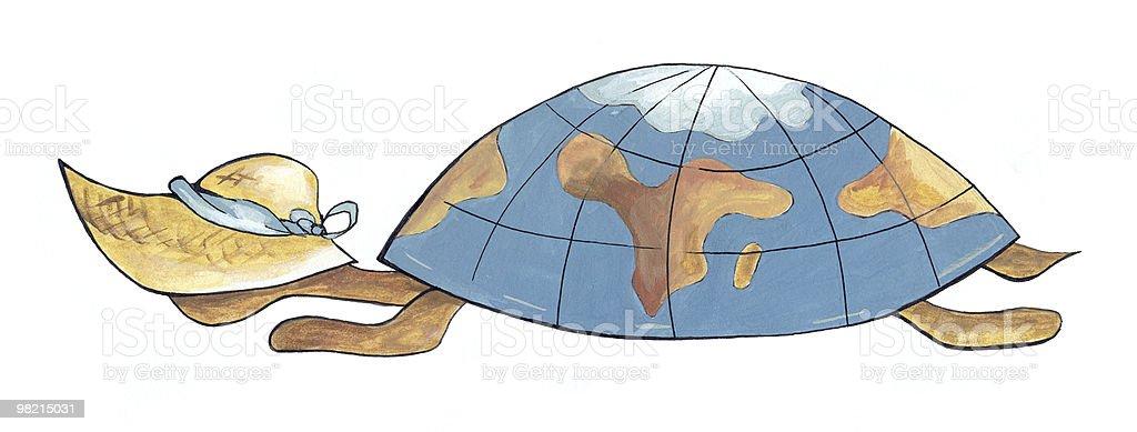 Vada a caccia di tartarughe foto stock royalty-free