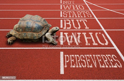 Turtle running athletic track motivational quote