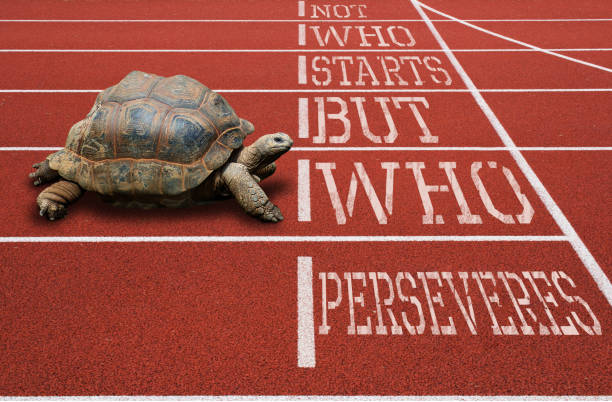 Turtle running athletic track motivational quote stock photo