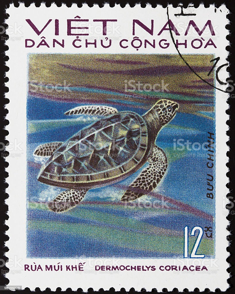 Turtle stamp royalty-free stock photo