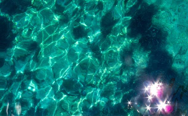turtle under the sea - immerse in the stars foto e immagini stock