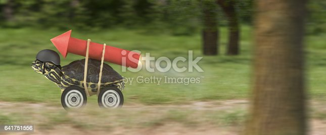 istock Turtle with jet-pack in a forest 641751556