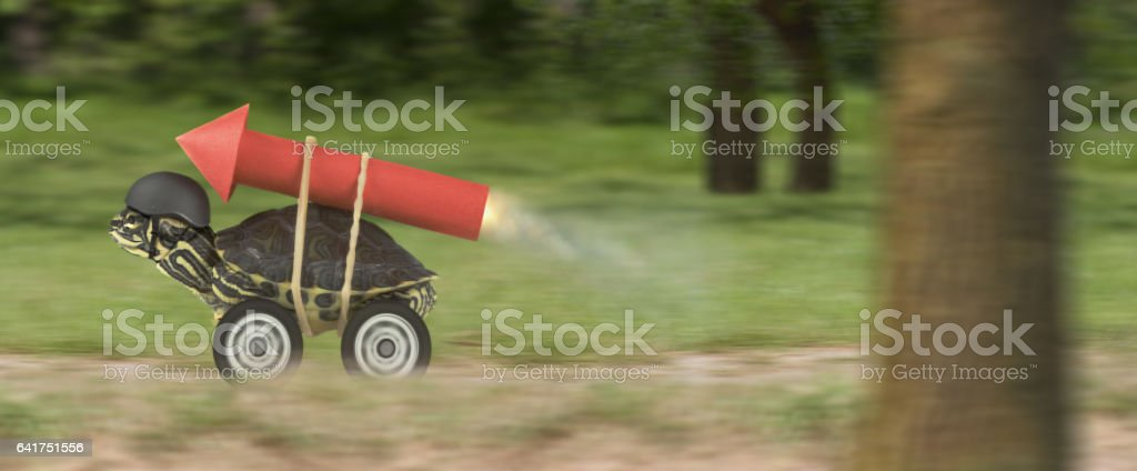 Turtle with jet-pack in a forest stock photo