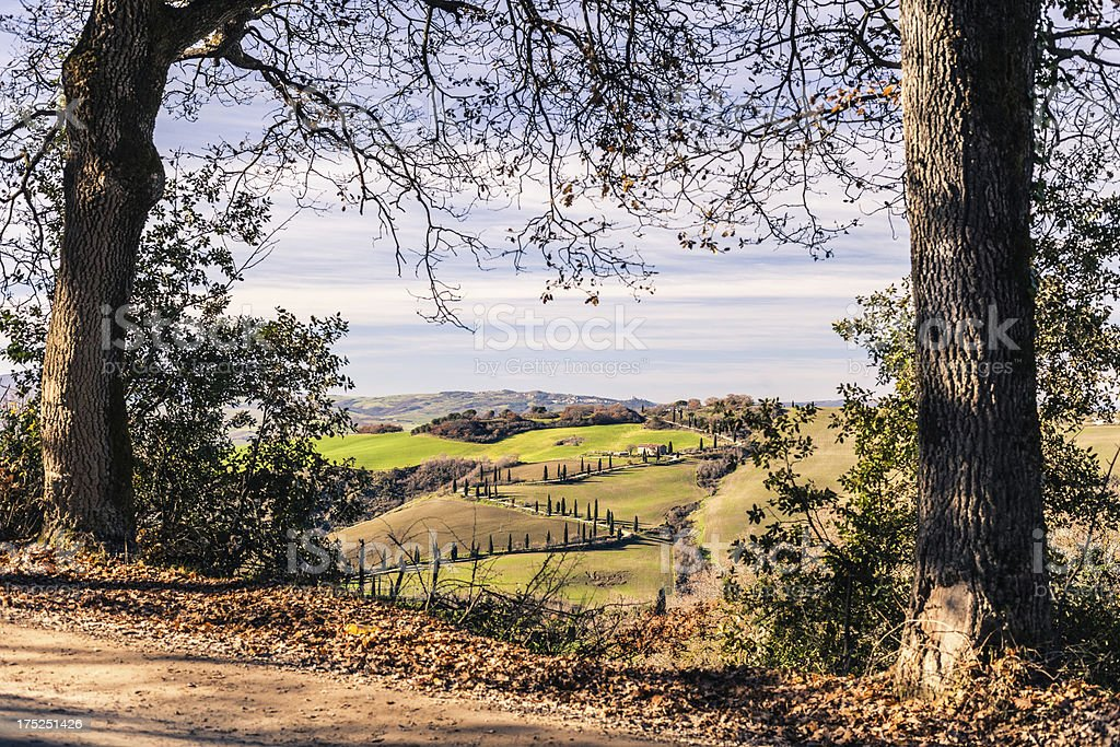 Tuscan country road royalty-free stock photo