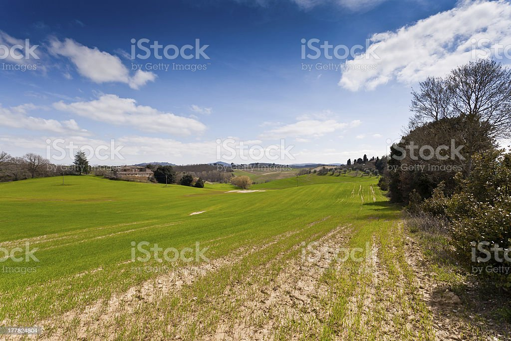 Tuscan hills royalty-free stock photo