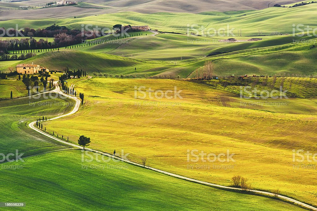 Tuscan hills stock photo