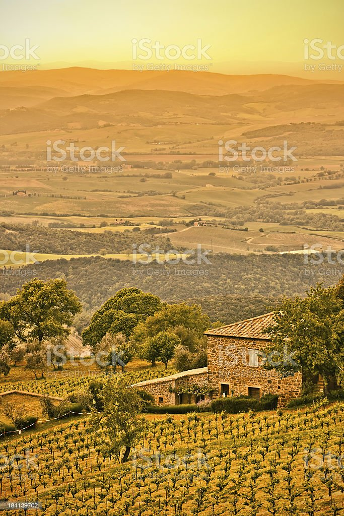 Tuscan Landscape at Sunset, Vineyards and Rural Villa in Italy royalty-free stock photo