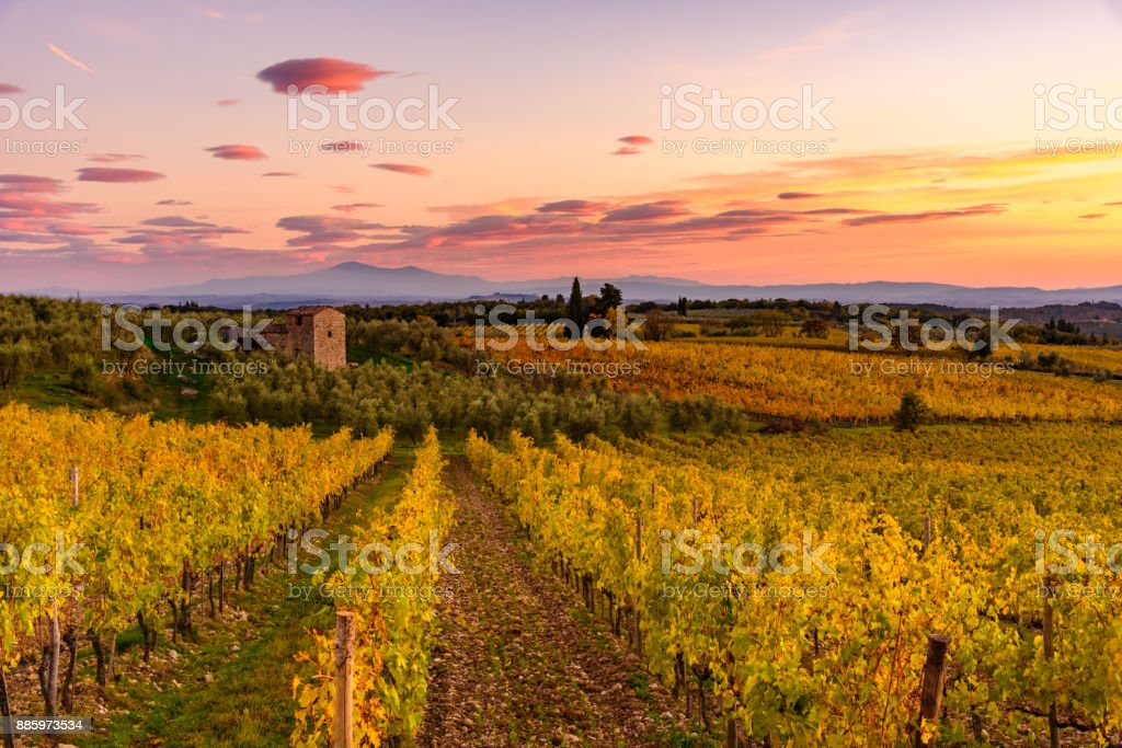 Tuscan landscape in autumn stock photo