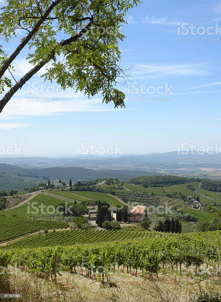 Tuscan view in Chianti region royalty-free stock photo