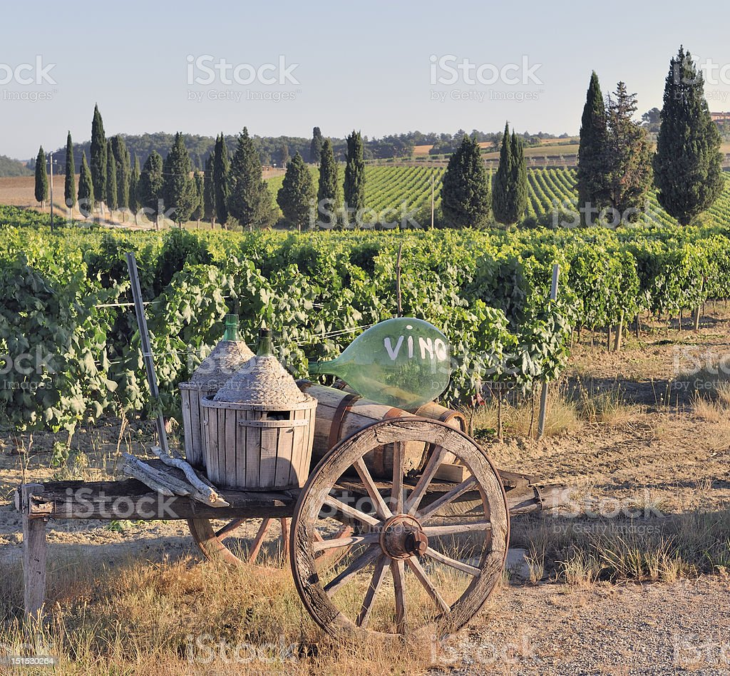 Tuscan vineyard with cart and wine-making equipment stock photo