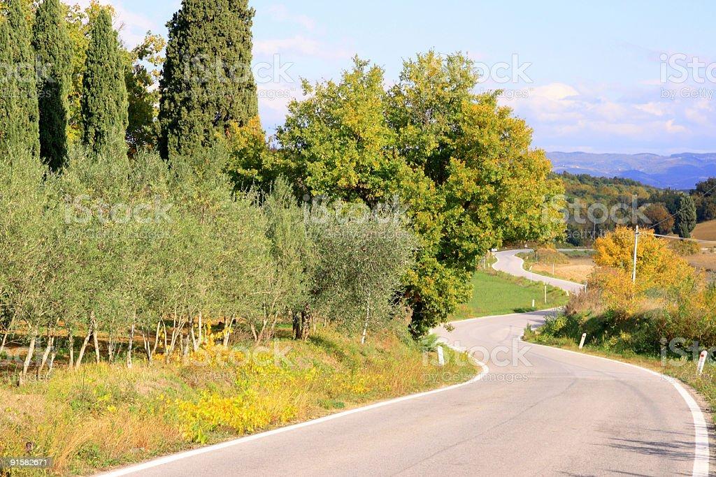 Tuscan winding road royalty-free stock photo