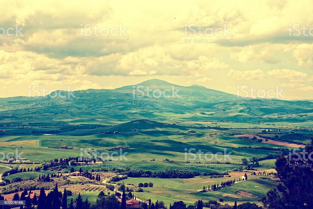 Tuscany at springtime, toned zbiór zdjęć royalty-free