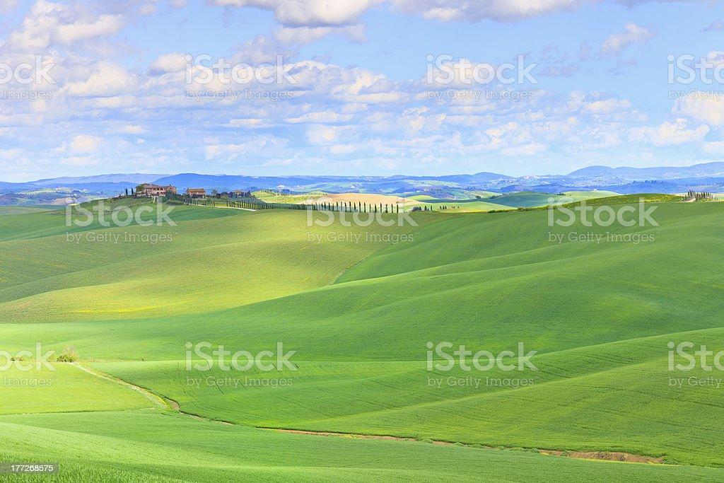 Tuscany, Crete Senesi country landscape, Italy. Hills, Green fields, farmland. stock photo