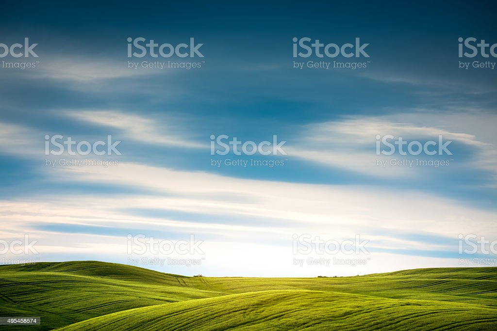 Tuscany Field stock photo