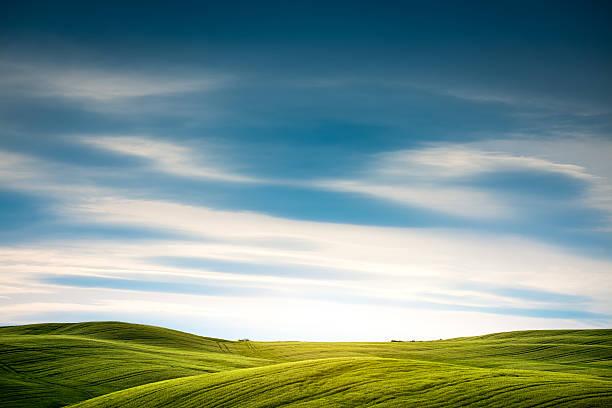 Tuscany Field - Photo